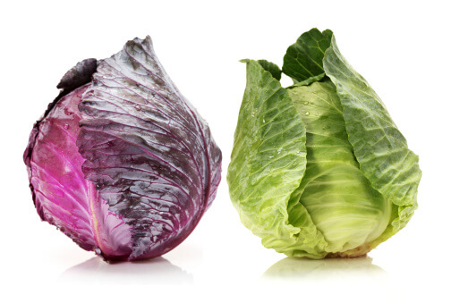 Why You Shouldn't Let the Smell of Cabbage Keep You Away