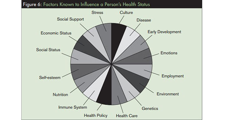 Look at the whole picture for root causes of disease
